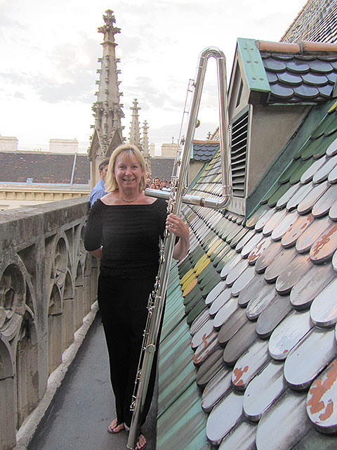Paige Long on the tile roof of St. Stephen's in Vienna