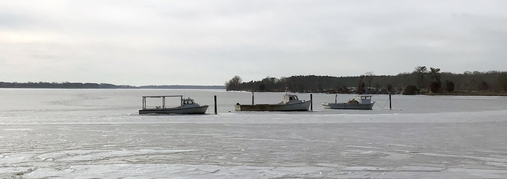 frozen boats.jpg