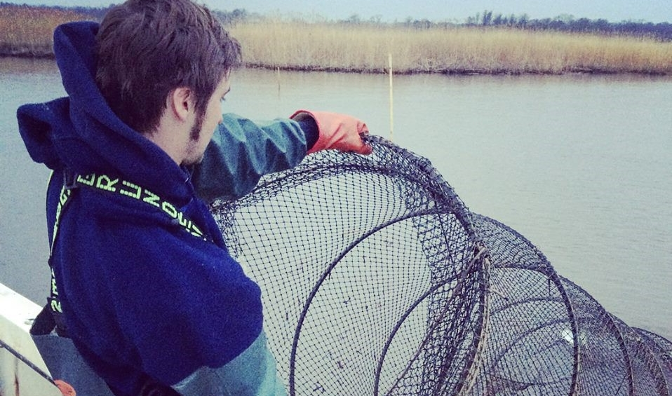 DNR Fish and Wildlife Health Program technician Jacob Shaner pulls in a fyke net on the Choptank River.