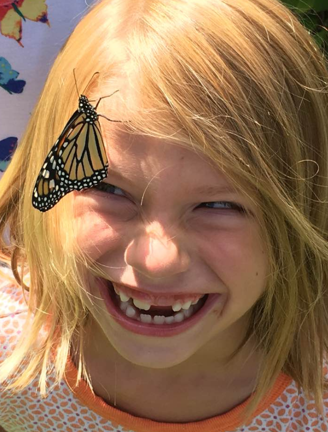 lucy butterfly.PNG