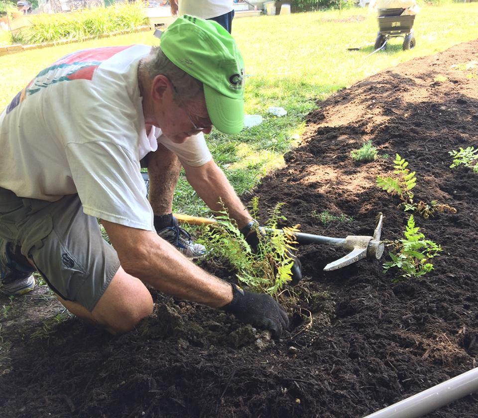 man planting.jpg