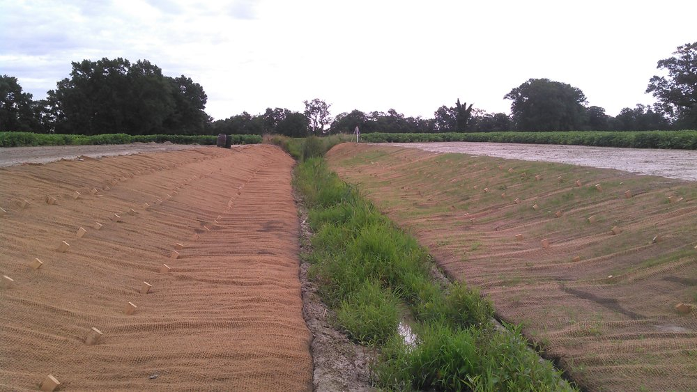 Shown is a retrofit of a 2-stage ditch, an example of a restoration practice eligible for funding by a $1 million grant from the National Fish and Wildlife Foundation Chesapeake Bay Stewardship Fund for restoration practices throughout the Choptank River watershed.