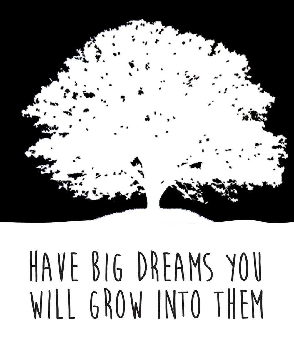 Inspiraiton // Have Big Dream // 18x21 // $65