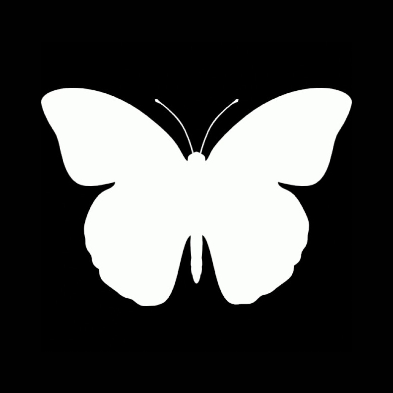 Animals - Butterfly
