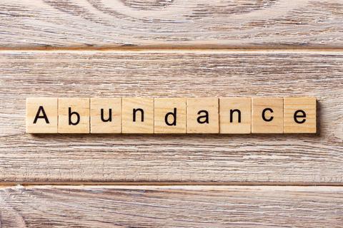 abundance image.jpg