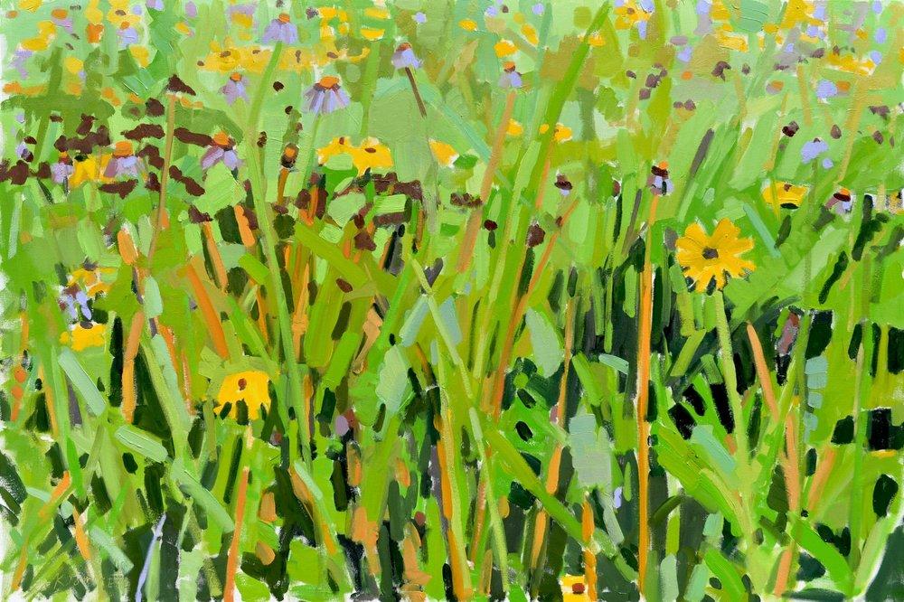 Wildflower Meadow III (Immersion)
