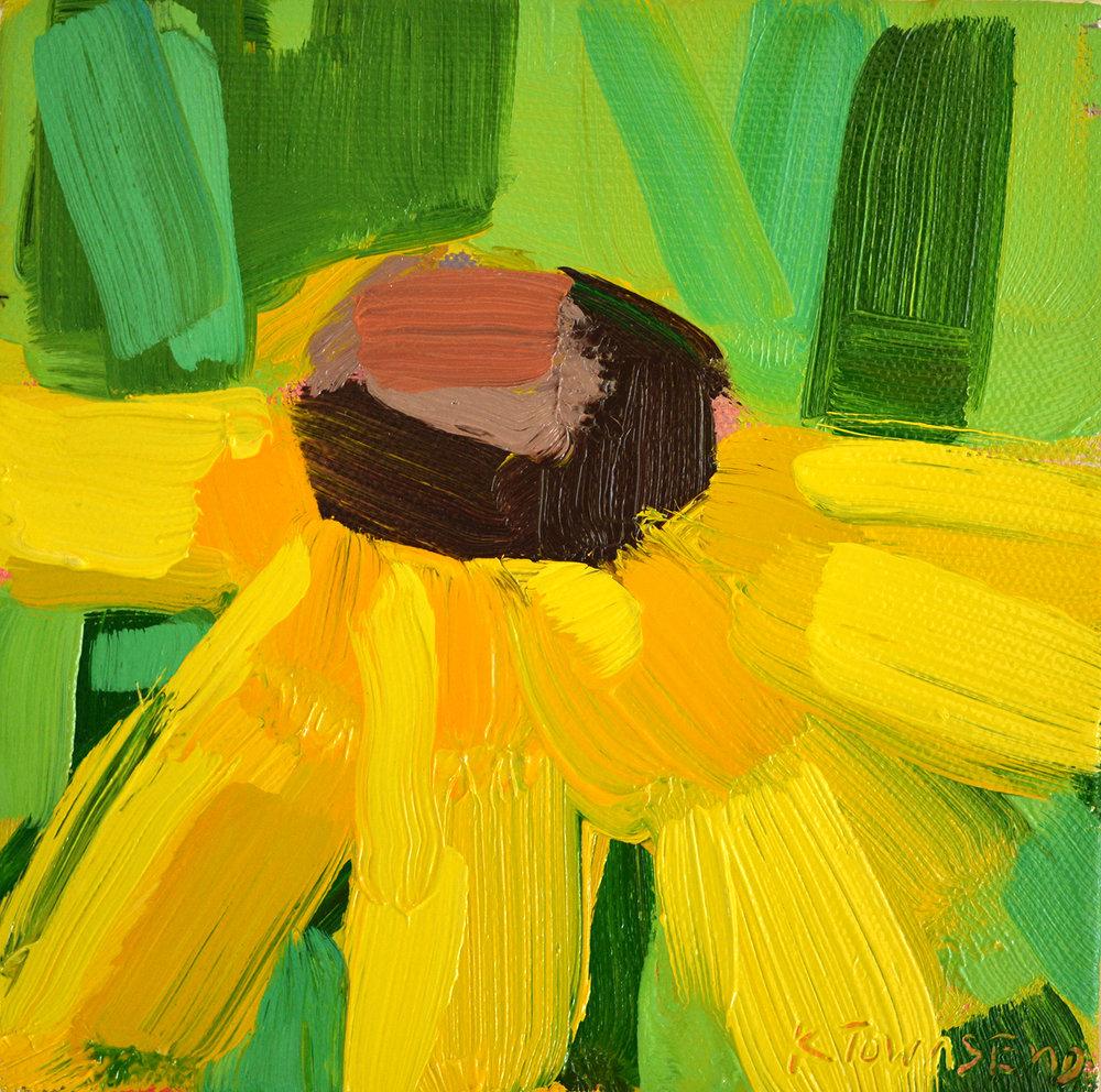 Flower Study - Yellow Echinacea