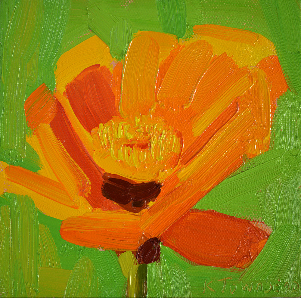 Flower Study - Orange Gerbera