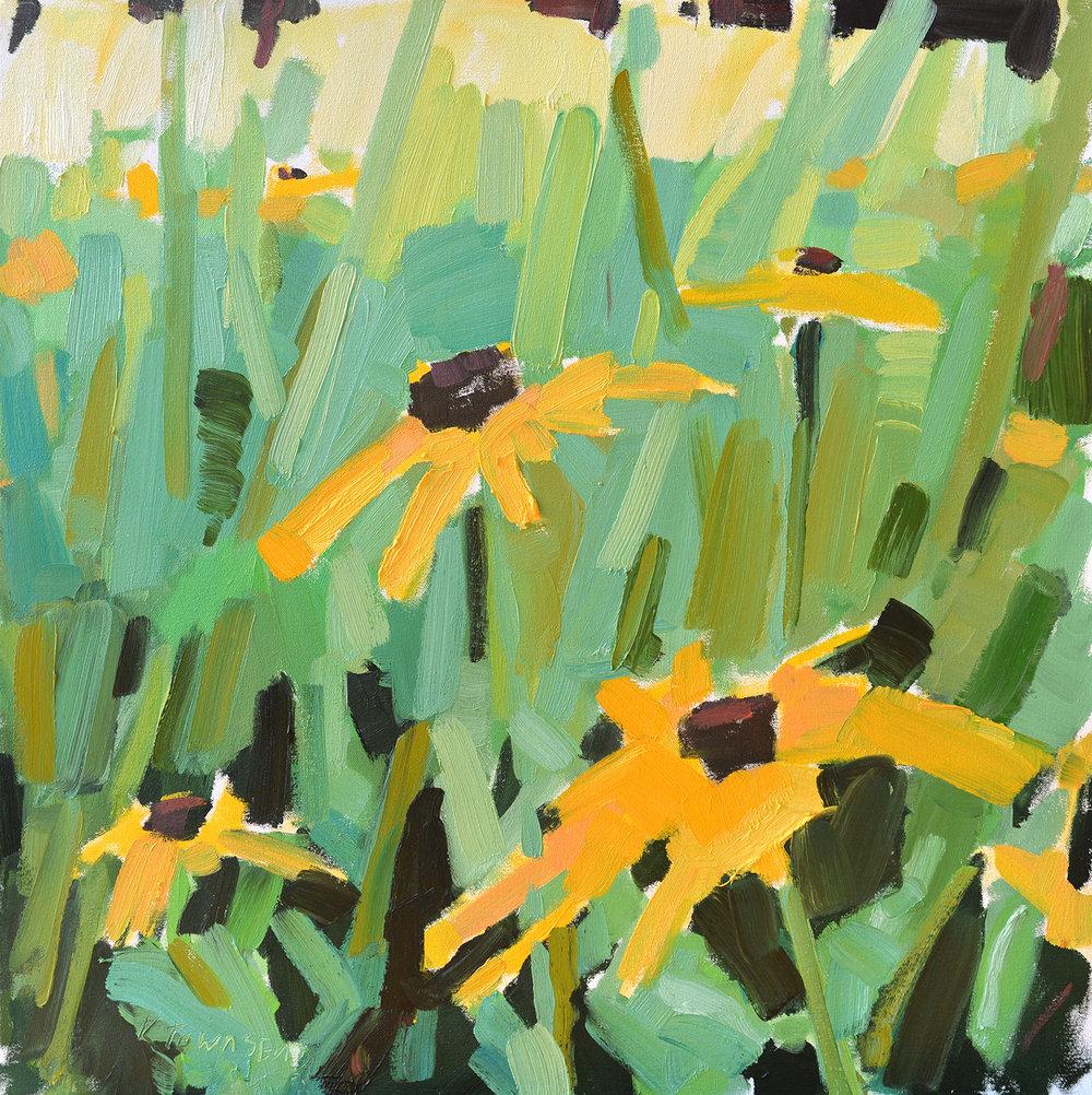 Yellow Echinacea Meadow