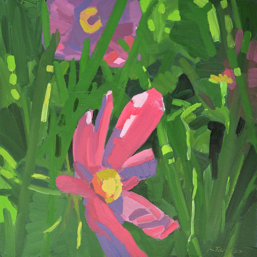 Flowers in Shadow
