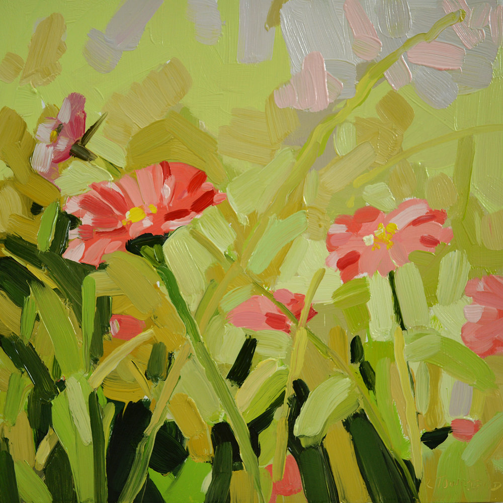 Pink Gerbera Meadow