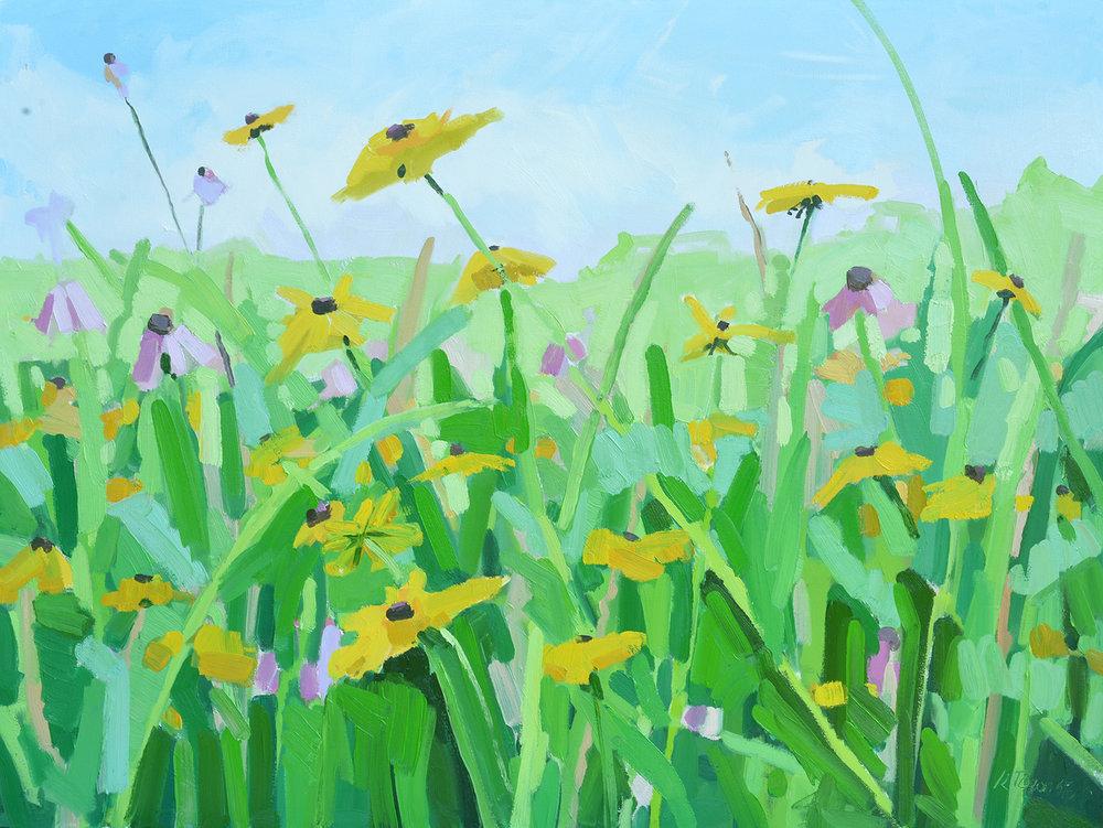 Soft Wildflower Meadow