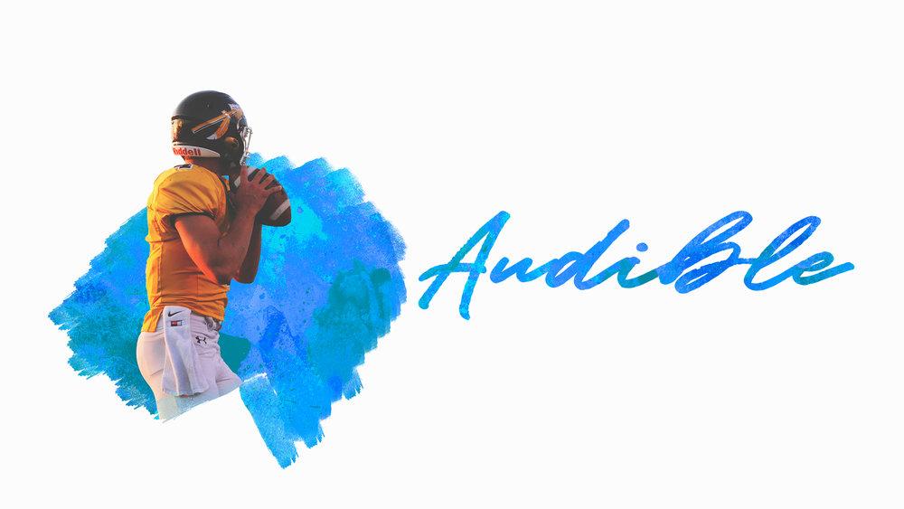 Audible - HD Graphic.jpg
