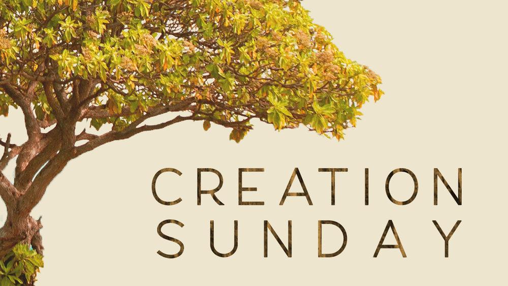 Creation Sunday - HD Graphic.jpg