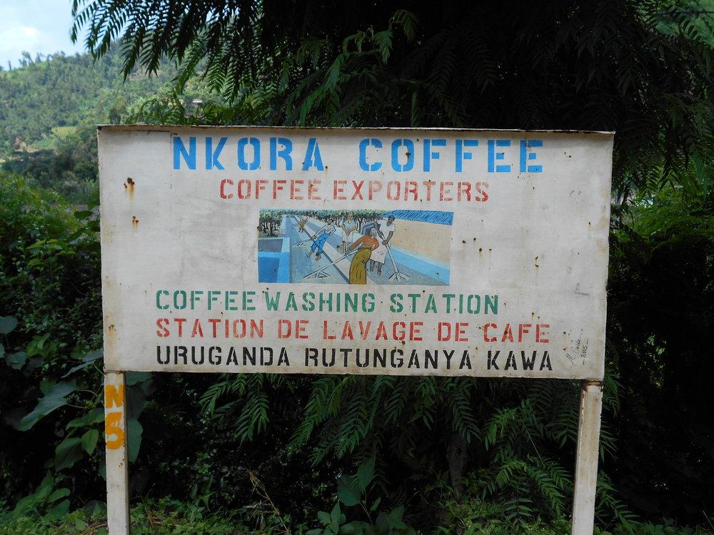 Nkora Coffee Washing Station