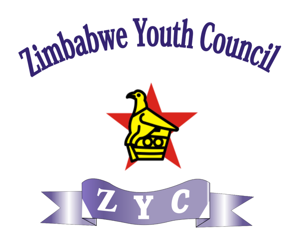Road Rules App Provisional Driver's License Test Zimbabwe Youth Council