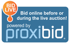 Proxibid Logo - 260px.png