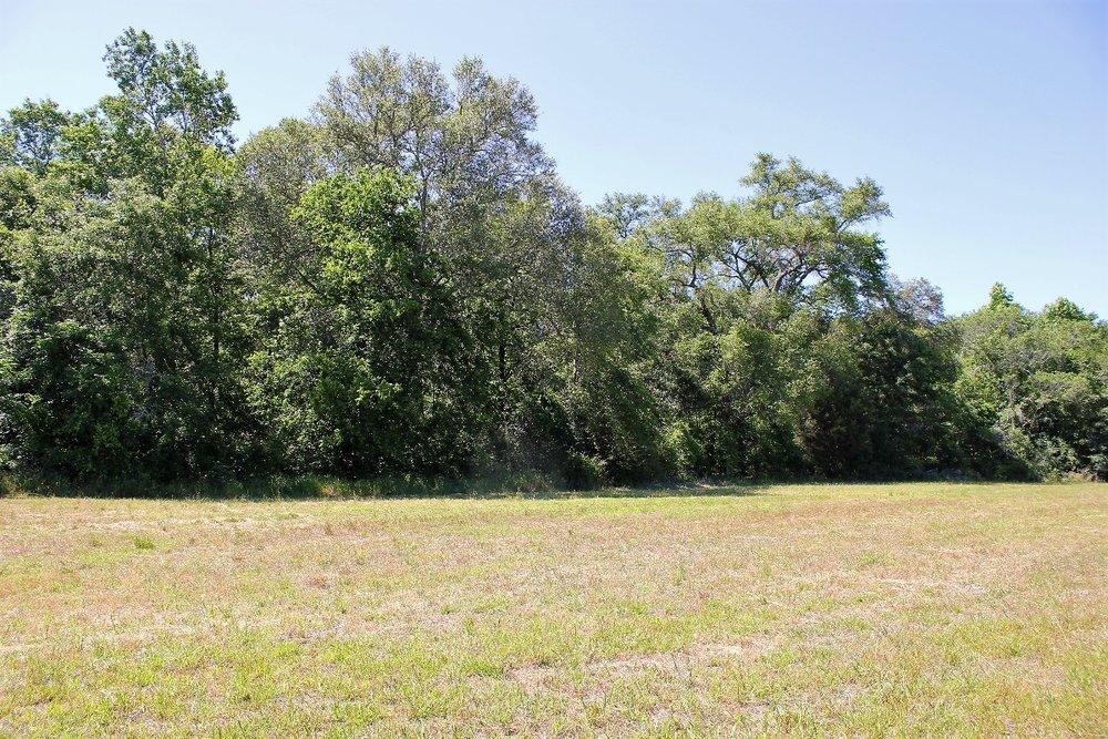 82 ac Hardwoods line Hay Field2.jpg