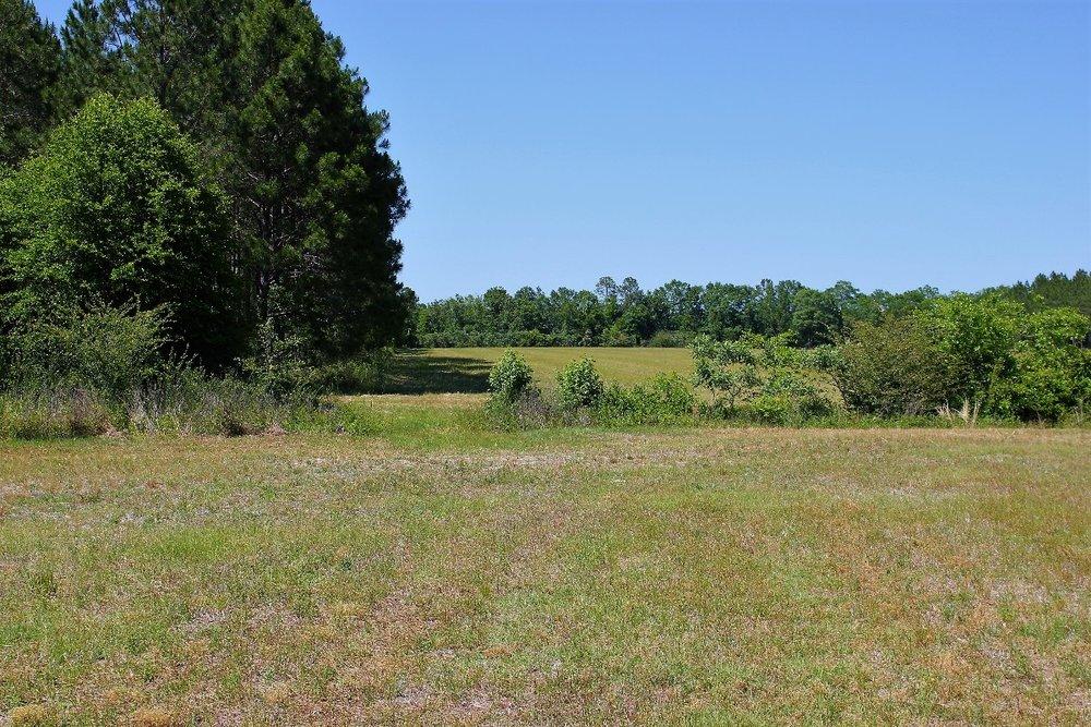 82 ac Hay Field-sm.jpg