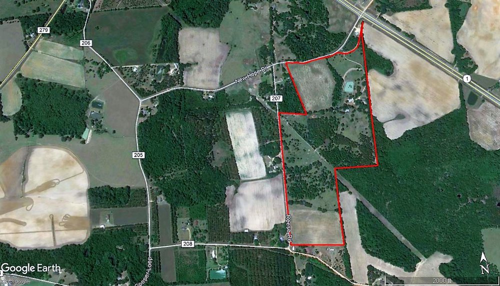 Aerial 98 Acre Pasture & Home.jpg