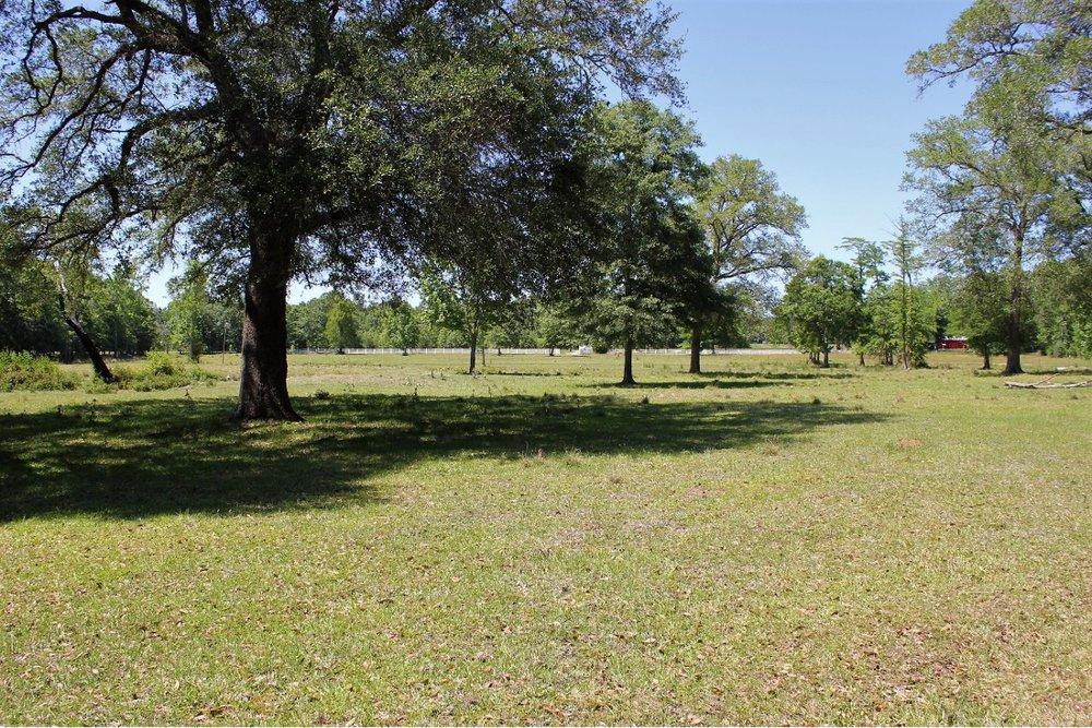Pasture View2.JPG