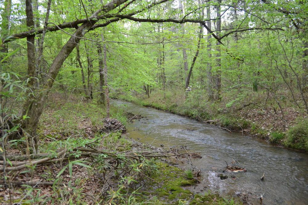 creeks.JPG