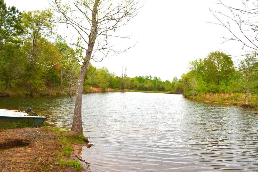 spring fed lake.jpg