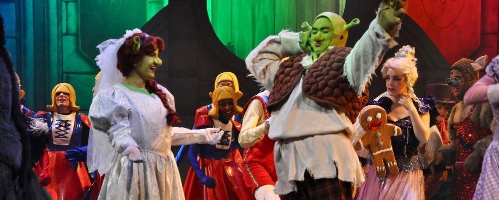 NHS Shrek.jpg
