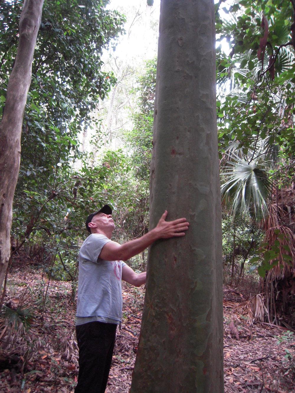 AUSTRALIA 2014 -- Depot Beach Trail.JPG