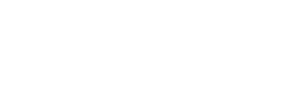 Zebrano Travel