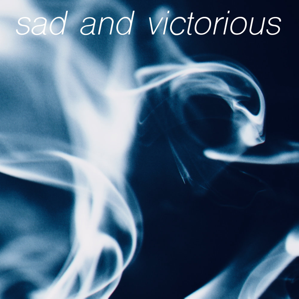 FlowerLight Sad and Victorious Smoke Sleeve.jpg