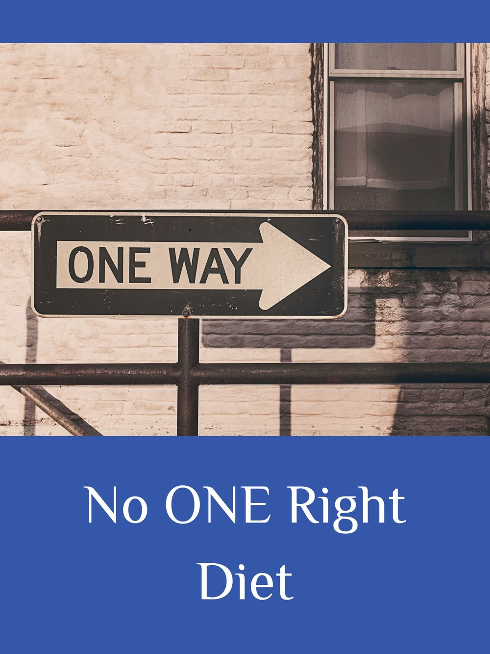 No ONE Right Diet.jpg