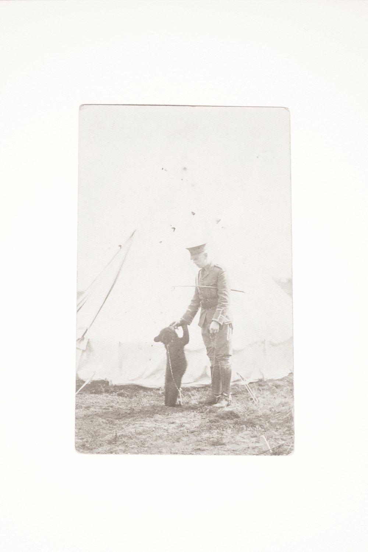 "canadian lieutenant harry colebournand his companion, a bear cub he named ""Winnie"""