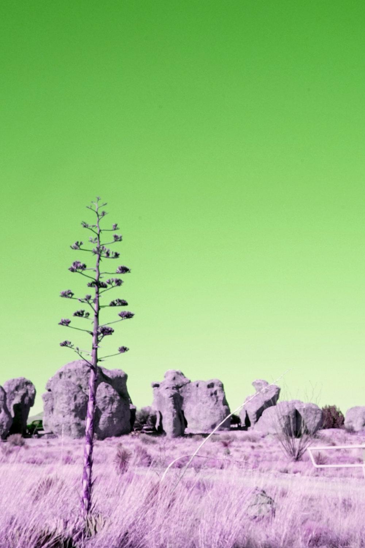 City Of Rocks State Park by Araya Jensen