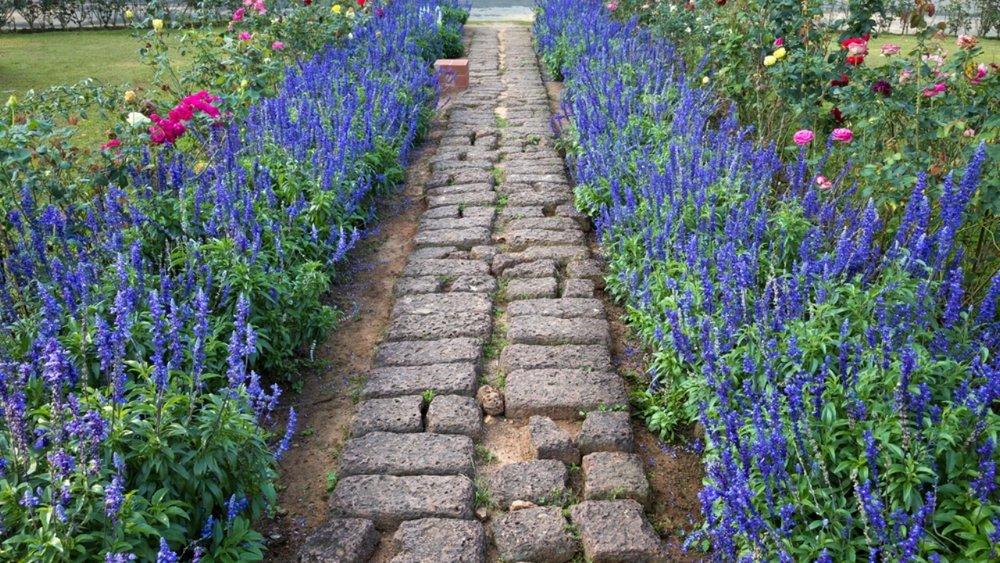 stone-path-in-gardens.jpg