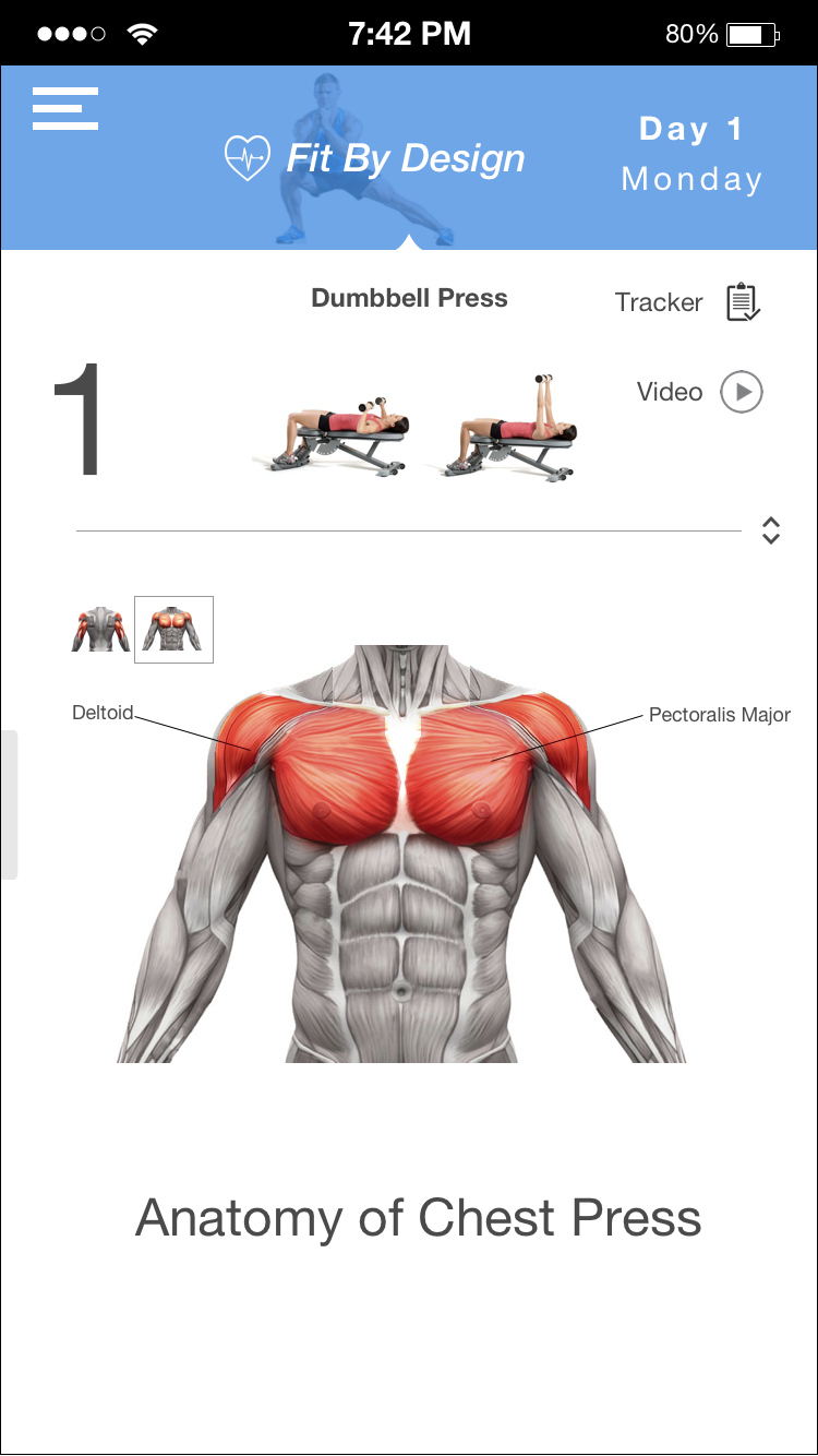 Observe which muscles are being used for each exercise