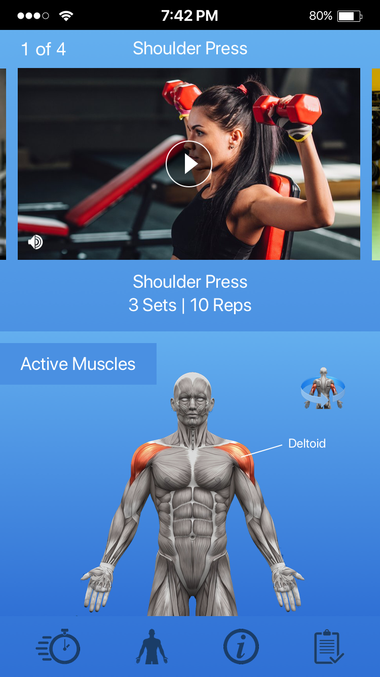 Observe targeted muscle groups through rotating anatomy figurine