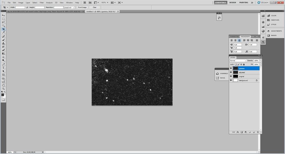 16 - gamma_01.jpg