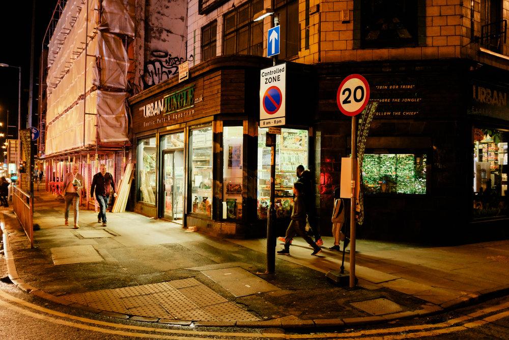 evening.camera-446.jpg