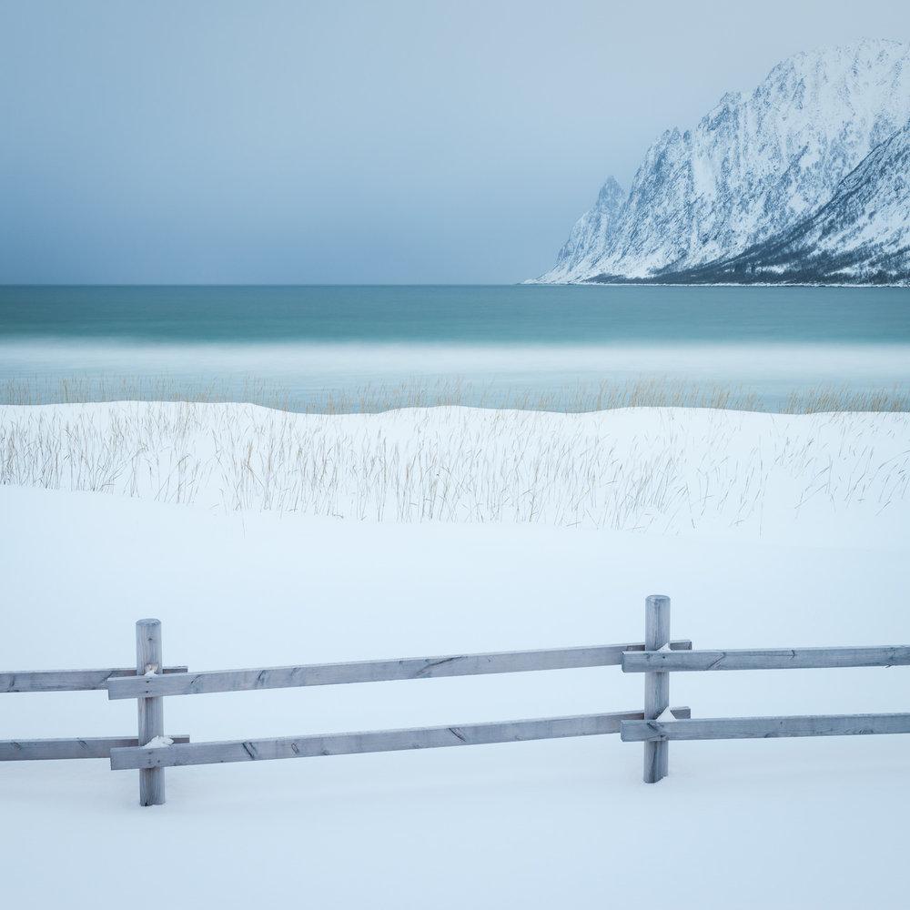 ARCTIC LIGHT SENJA ISLAND -