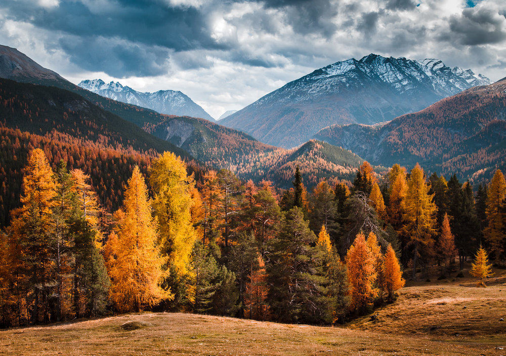AUTUMN COLOURS OF SWITZERLAND -