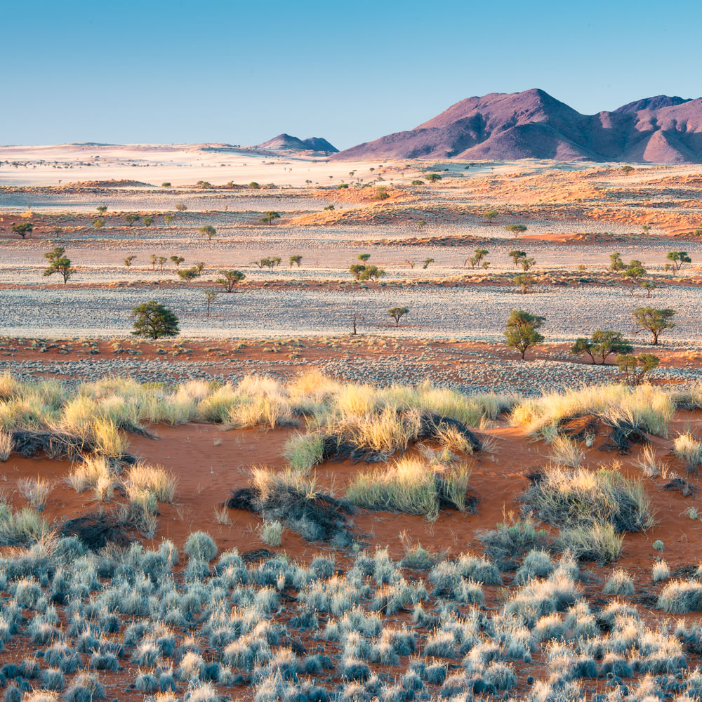 NAMIBIA: NamibRand -