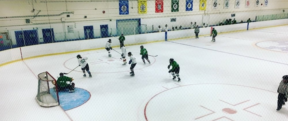 Women's Hockey Leagues -