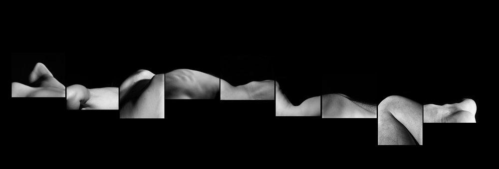 wavecollective1.jpg