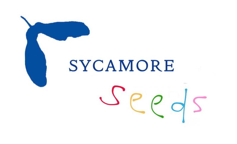 Sycamore Seeds logo