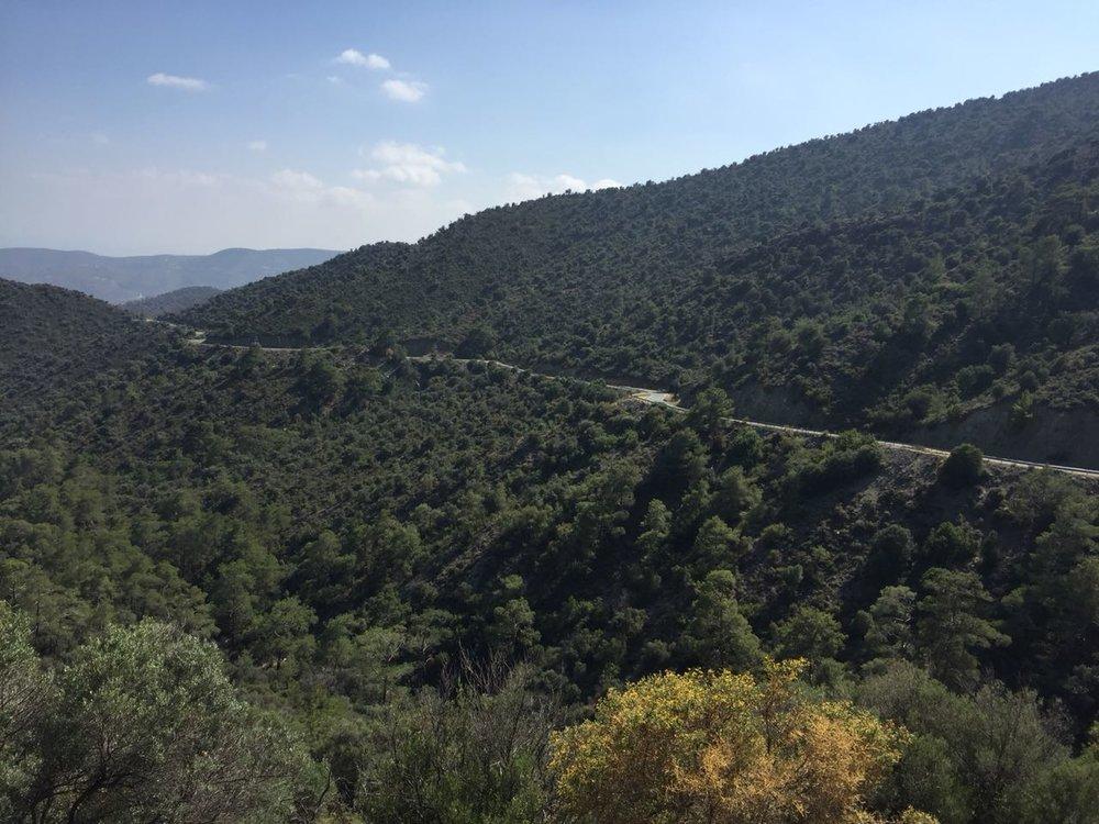 Road down to Akrounta near Limassol.jpeg