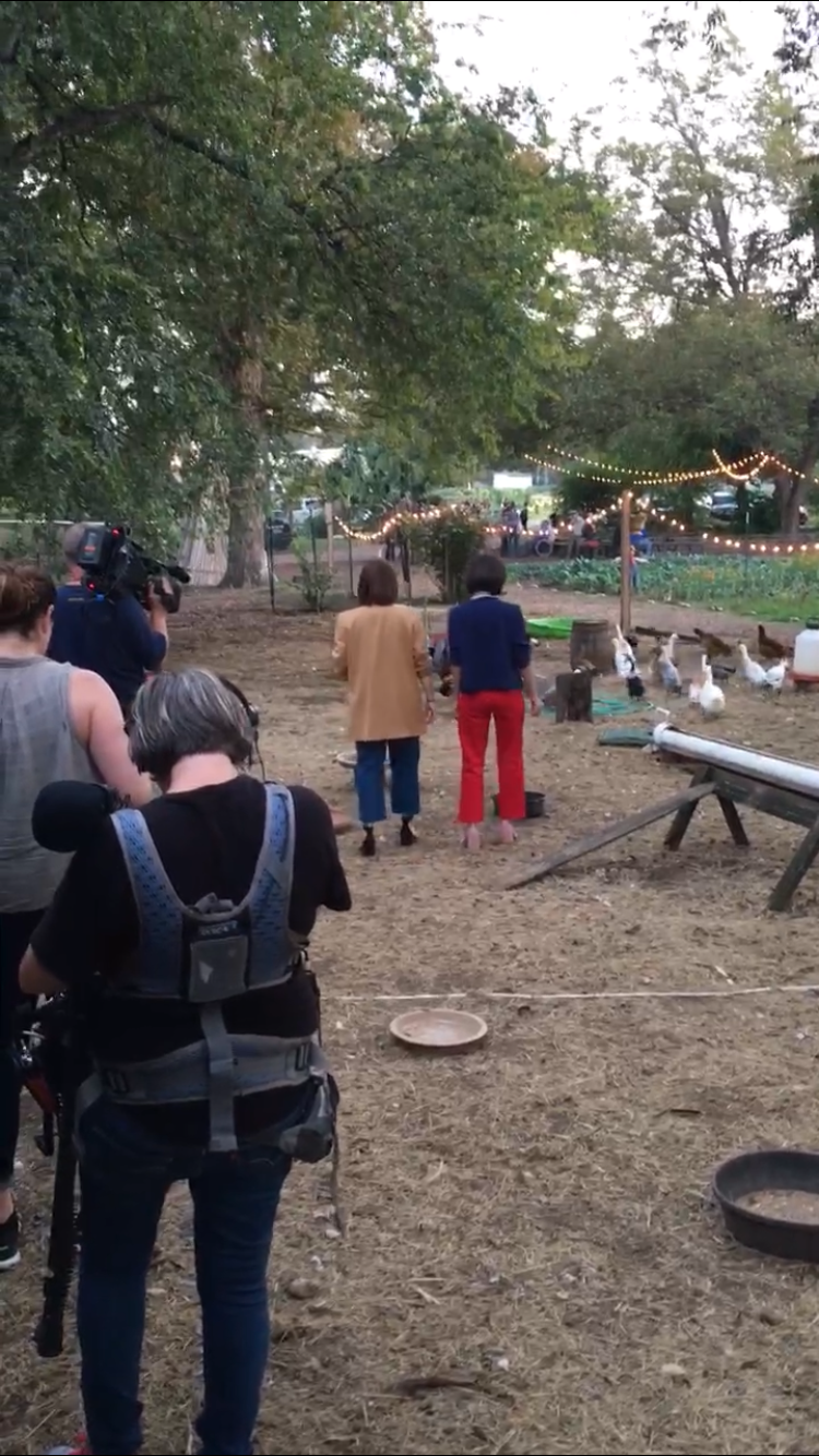 Exhibit A: Casually walkin' with some ducks & a camera crew in tow.