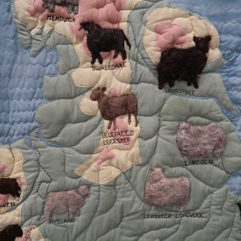 1 sheep.jpg