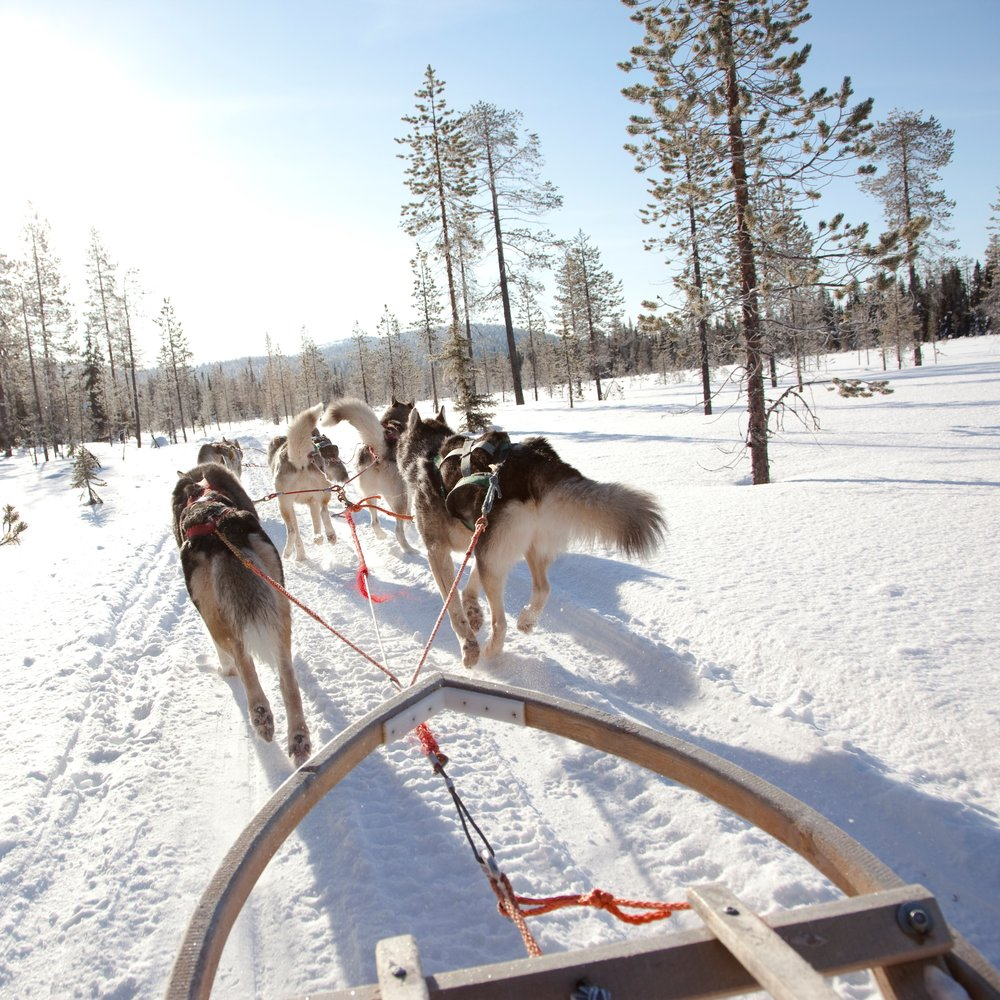 So Incentive Travel Meetings Events Lapland.jpg