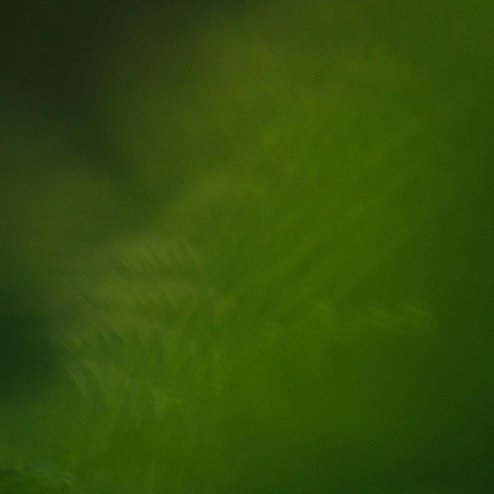 IMG_0757_web.jpg